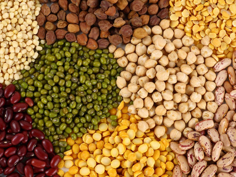 Pulses and Lentils Wholesale UK