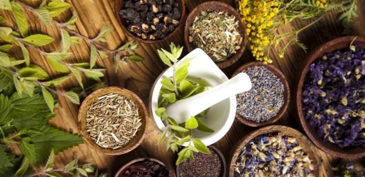Herbs and Spices Wholesale UK